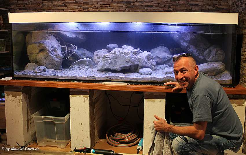 malawi dekoration aquarien. Black Bedroom Furniture Sets. Home Design Ideas