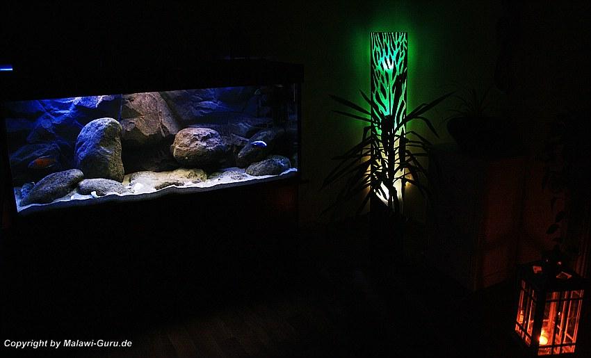 Malawi Beleuchtung   Malawi Guru De Beleuchtung Aquarien
