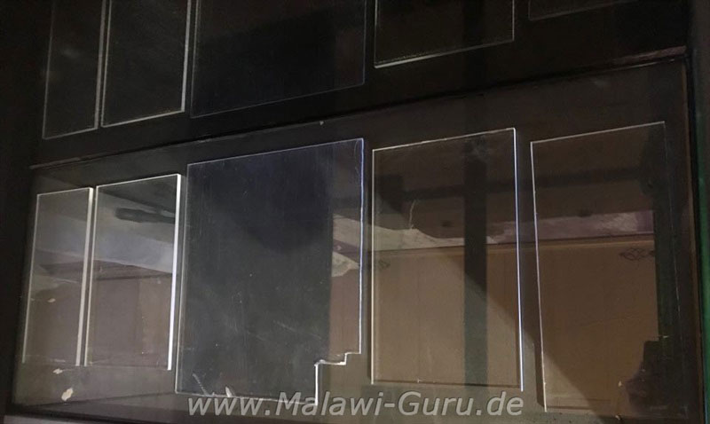 malawi styropor plexiglas oder licht raster platten im aquarium. Black Bedroom Furniture Sets. Home Design Ideas