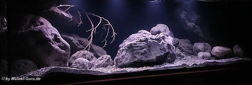 malawi led beleuchtung in der aquaristik die. Black Bedroom Furniture Sets. Home Design Ideas